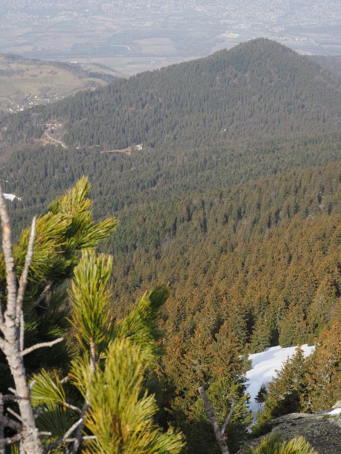 On distingue le lac de Freydières, juste le toit de la Gélinotte puis le petit hameau de Freydières, dans la forêt  au pied des montagnes de belledonne.