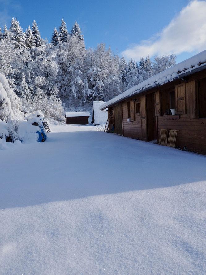 Ce matin c'est encore magnifique à Freydières. Ici le gîte d'étape de Freydières. Mais la neige ne devrait pas résister longtemps... (voir billet ci-dessus)