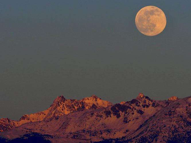 BelleDonne et sa lune magnifique... Photo Christian Foex, merci !