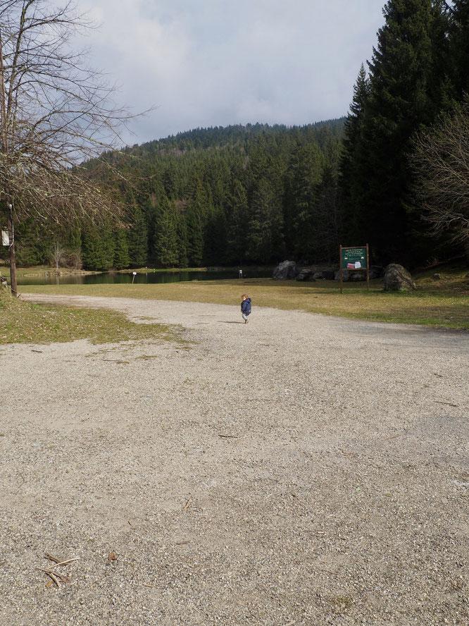 Un dimanche midi par beau temps, le lac de Freydières totalement désert, je crois que cà n'était jamais arrivé.... Léni n'a pas encore 20 mois et bien chanceux. Visiblement il ne vit pas si mal que ça d'être confiné (avec nous à la Gélinotte...) !