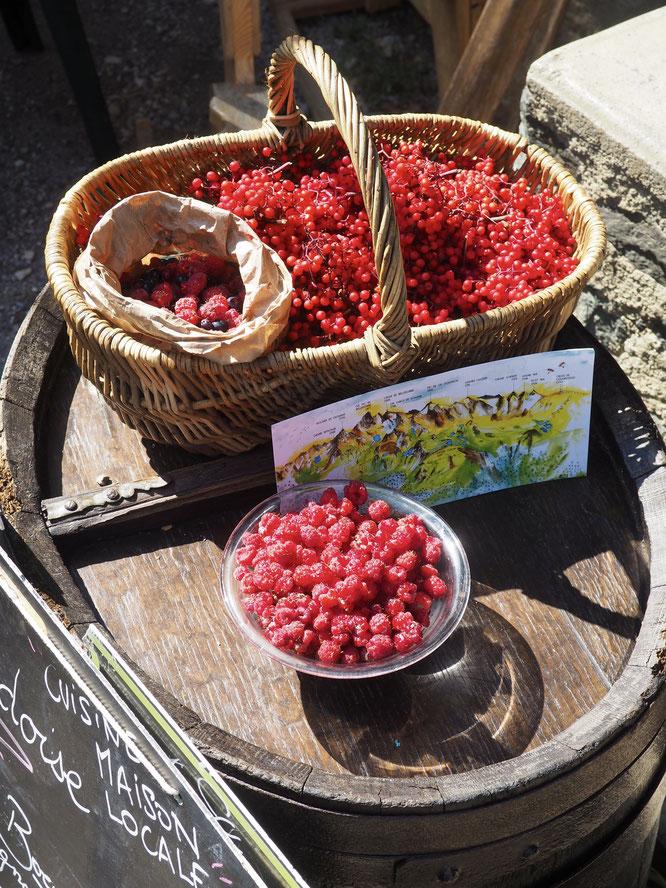 Les montagnes de Belledonne et une multitude de petits fruits de la forêt... Ces jours ci à Freydières.