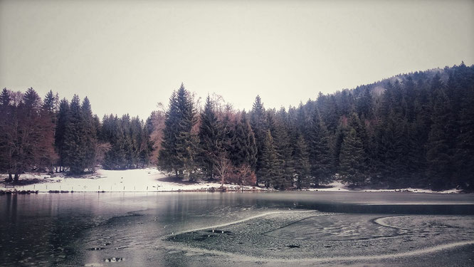 """Le lac de Freydières ce weekend, par Edith. Merci. """"Dans la langue d'un peuple sibérien de chasseurs, le mot """"chance"""" se dit """"silence de la forêt"""". Demain nous ferons moins de bruit.  ~ Baptiste Morizot, """"Une saison chez les vivants""""."""