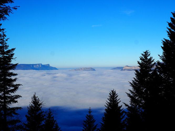 9h ce matin. C'est clair ! ll fait toujours beau au-dessus des nuages même quand ceux-ci descendent se caler vers 900m comme ce matin au dessus de Grenoble..