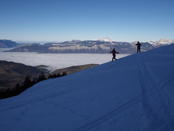 1er janvier en milieu de matinée du coté de la cabane du berger sur le Grand Colon, 1500m au dessus de Grenoble...