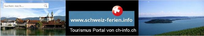 wohnung Solothurn