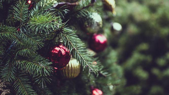 ik wil een gratis kerstboom