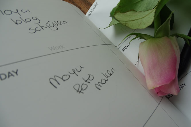 MOYU notitieboek review