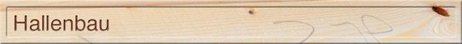 Stallbau für die Landwirtschaft grosse Spannweite Holz Hallenbau mit Stahlträgern und Spannholz Wand Elementholzbauweise Dani Vogt D. Vogt Holzbau GmbH CH 8855 Wangen SZ Markthalle Turnhalle Viehhalle Sporthalle Einstellhalle Lagerhalle Maschinenhalle