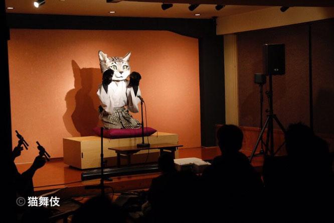 KABUKing in Asakusa 猫舞伎 2019