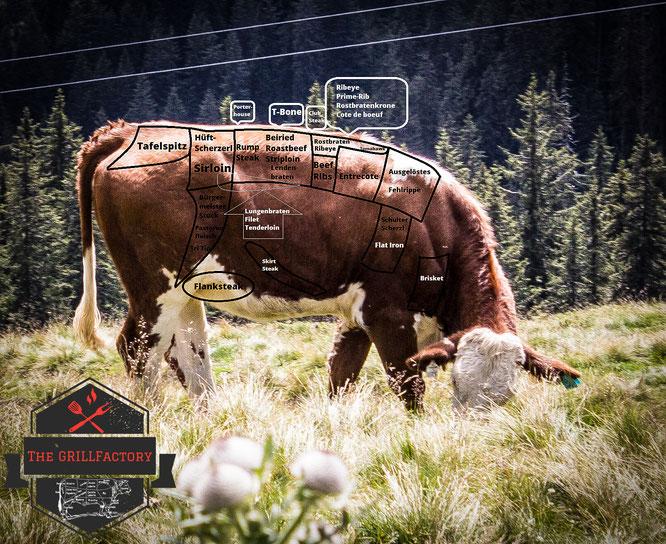 Die Steakteile vom Rind - Bild anklicken zum Vergrößern