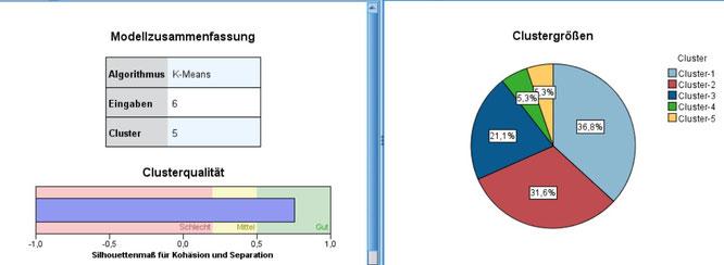 Ergebnisse und Qualität der Clusterverfahren im SPSS Modeler