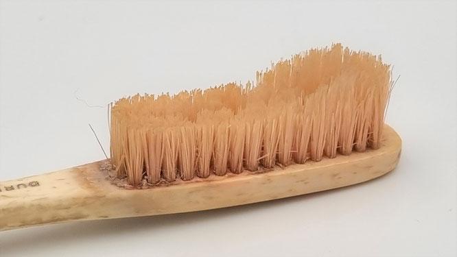 ParoSphère Formation | Vide-grenier | Brosse à dents GIBBS