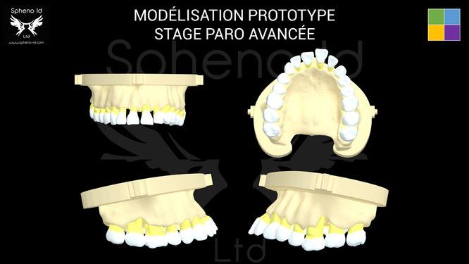 ParoSphère Formation | Formation Paro Avancée