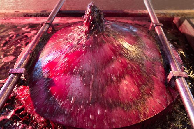Belüftung des Rotweins während der Gärphase - Foto: Claudia Michalopulos