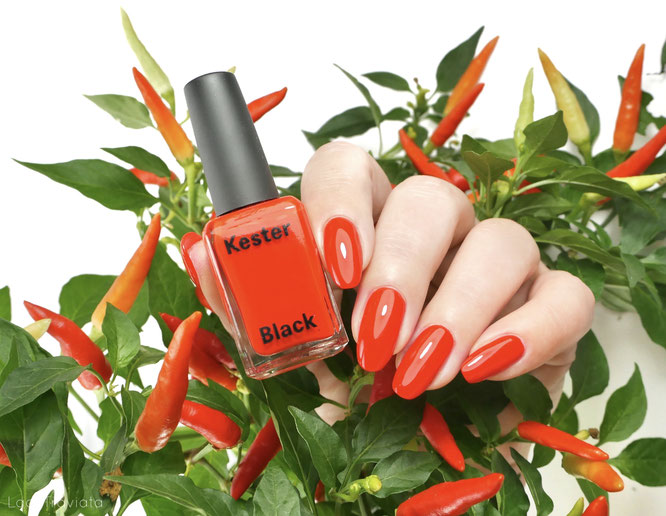 KESTER BLACK • TALL POPPY (new for fall 2020)
