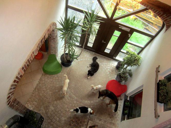 Im Eingangsbereich des Hauses