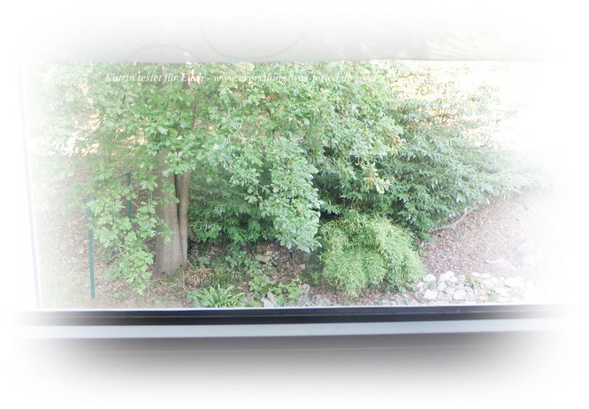 Die Welt ist ja bunt da draussen :) ... Dank dem deleo® Fensterklar.