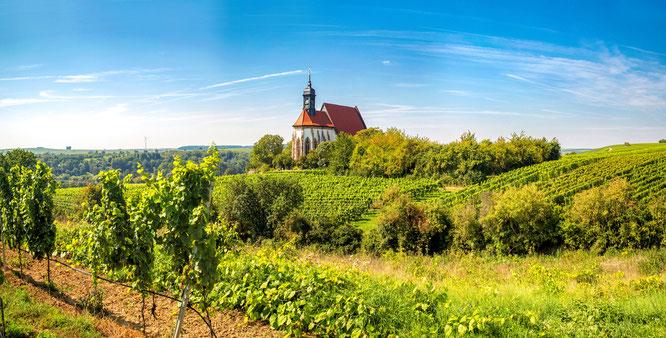 Unterwegs im Fränkischen / Weinland Den Steigerwald zur Linken, die Haßberge zur Rechten folgen die Radreisenden dem Fluss, der sich gemächlich seinen Weg durch das Fränkische Weinland bahnt. Bildnachweis: Radweg-Reisen