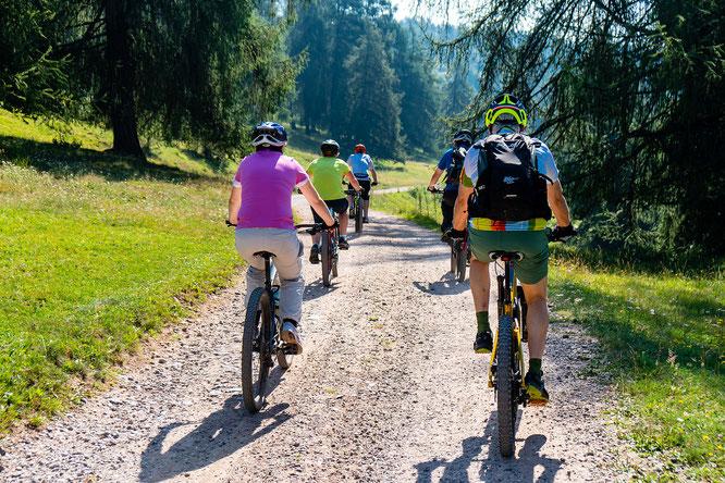 Bild von MaBraS auf Pixabay -  ZIV widerspricht dem BUND Bayern und fordert konstruktiven Dialog