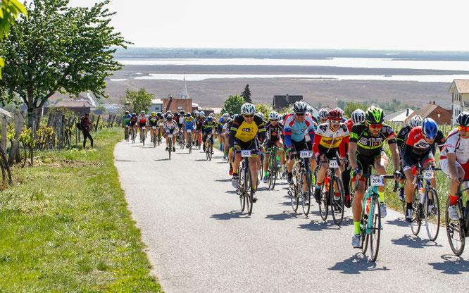 Der Marathon in der Startphase (Copyright: sportshot.de)