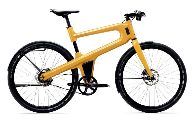 E-Bike Mokumono Delta S