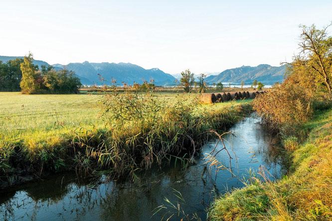 Mit der Collection rund um Weilheim und Murnau das zauberhafte Murnauer Moos entdecken © oberbayern.de