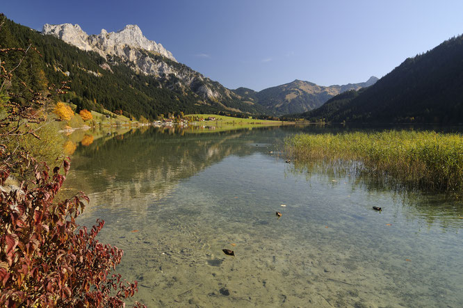 Herbst Tannheimer Tal ©Wolfgang Ehn