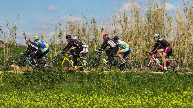 Vorbereitung für den Ausdauer-Radsport ist entscheidend
