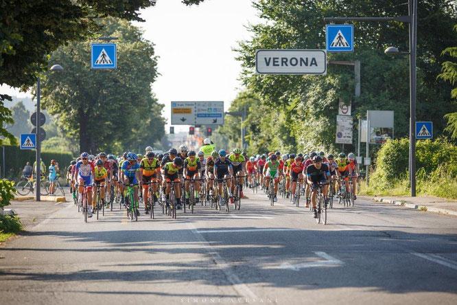 Alé La Merckx - Credits Avesani
