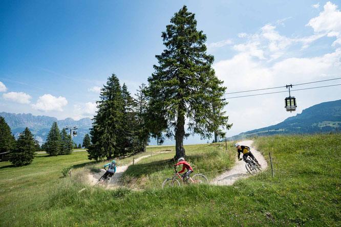 Über den BikerTrail BlueSalamander kurven. ©Bergbahnen Flumserberg AG