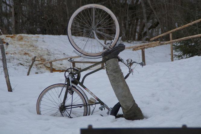 Kein Mitverschulden eines verunfallten Radfahrers, der zu spät vor einem über einen Feldweg gespannten Stacheldraht bremst / Bildquelle: M W auf Pixabay