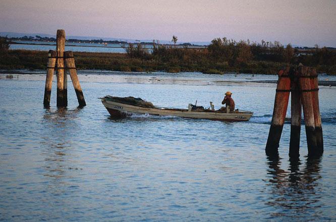 A pesca nella laguna ©Marano