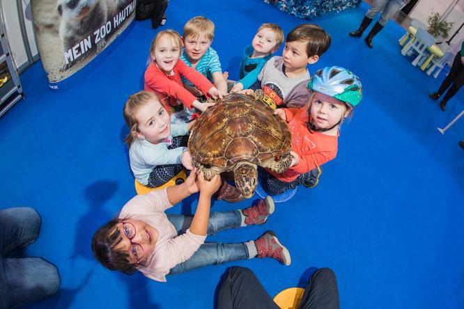 Kinder haben die Möglichkeit, Schildkrötenpanzer, Schlangenhäute und Echseneier tastend zu erkunden und hautnah zu erleben ©Messe Essen