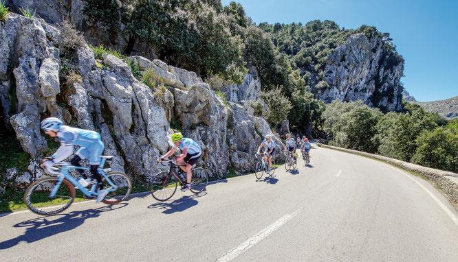Mit dem Rennrad auf Mallorca ©Bild: Frank Nürnberger auf Pixabay