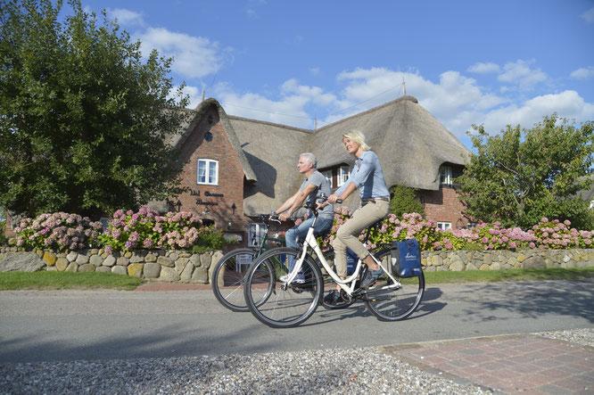 Inselradeln Nordfriesland mit der Landpartie startet im April  © Die Landpartie Radeln und Reisen