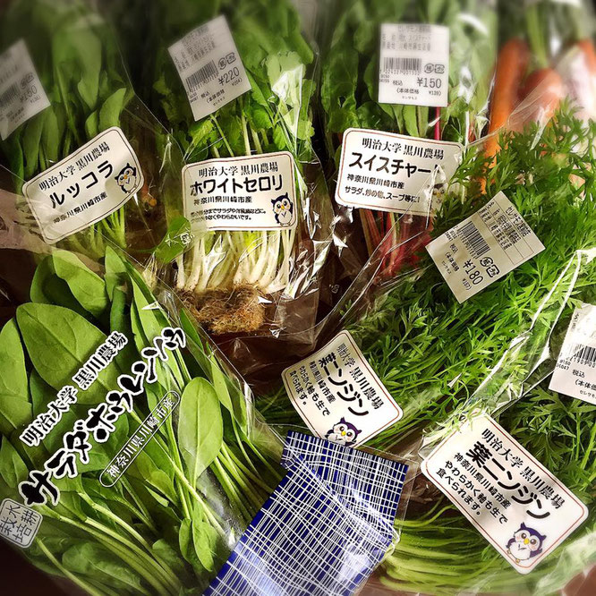 そがさんがご用意した地元川崎産の新鮮野菜。今回使用した17種類の野菜について、それぞれどの農家さんが育てたものかリストにしてご紹介されていました!