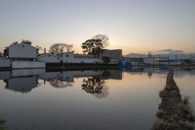 泉橋酒造の冬期湛水