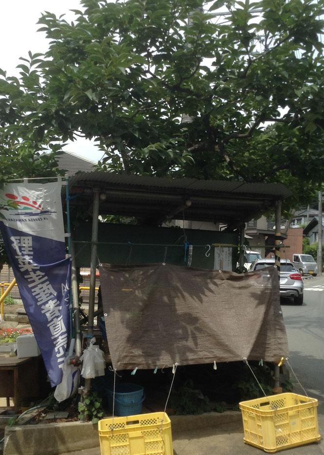 柿の木の下の直売所