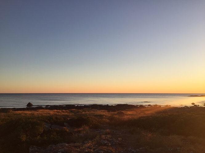 Krabbenkino am Kattegat und schicke Strände an Schwedens Westküste