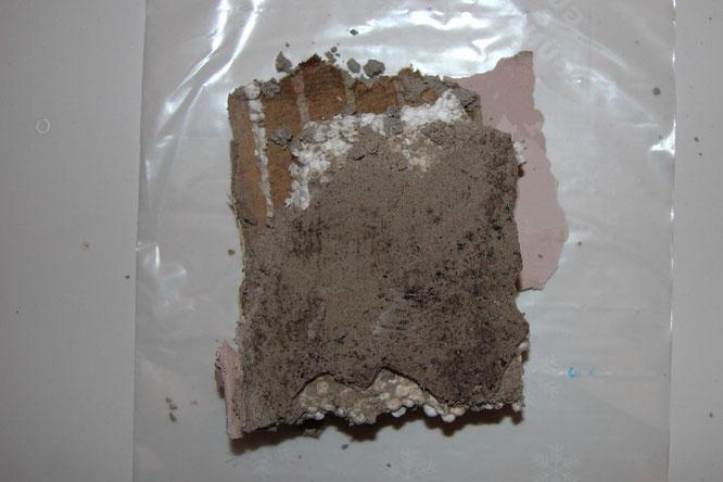 An der Rückseite der entfernten Wärmedämmverbundplatte waren Schimmelpilzbildungen vorhanden.