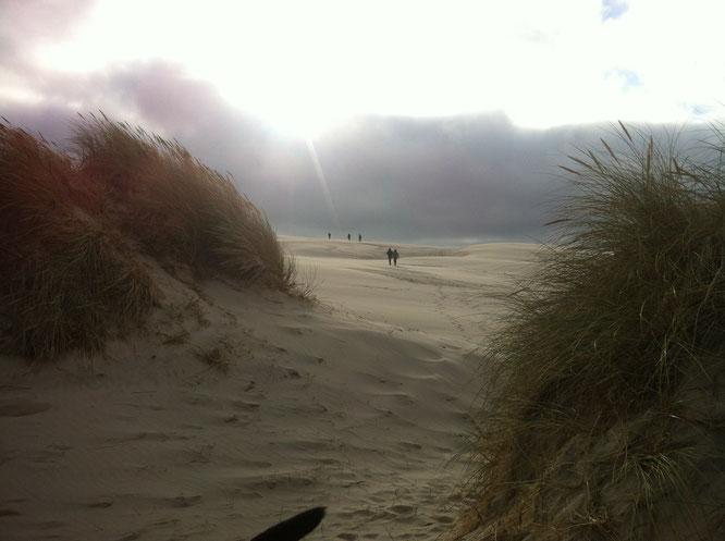 Sandverwehungen hätten Skagen im 19. Jahrhundert beinahe ausgelöscht.