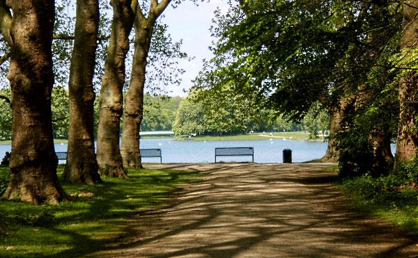 Einsame Bank an einem ruhigen See