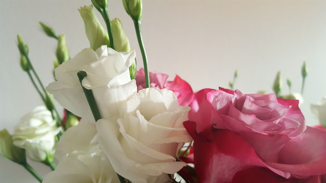Zwischen den Jahren; Blumenliebe; Rosen; Eustoma; Lisianthus; RandomReflections; live4happiness2day; bloggingforinspiration