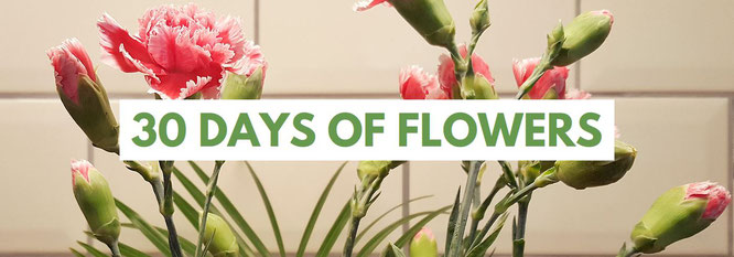 30 days of flowers; 30 Tage Projekt; 30 Tage Blumenliebe; Blumenliebe; live4happiness2day; bloggingforinspiration; Passion Projects
