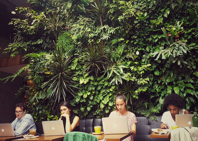 Devocion; Brooklyn; Williamsburg; Coffee Shop; Cafe; Arbeiten im Cafe; live4happiness2day; bloggingforinspiration