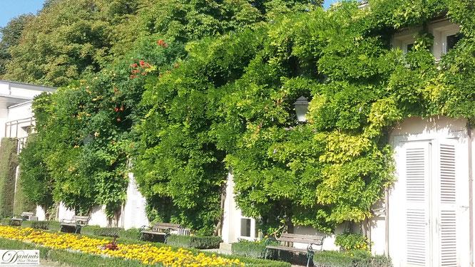 Salzburg, die Orangerie im Mirabellgarten