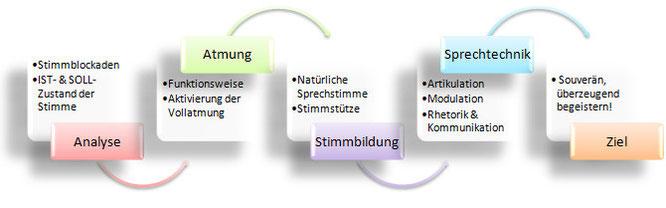 Module Stimme Stimmtraining Rhetorik Kommunikation Seminar Workshops Karin Neidhart