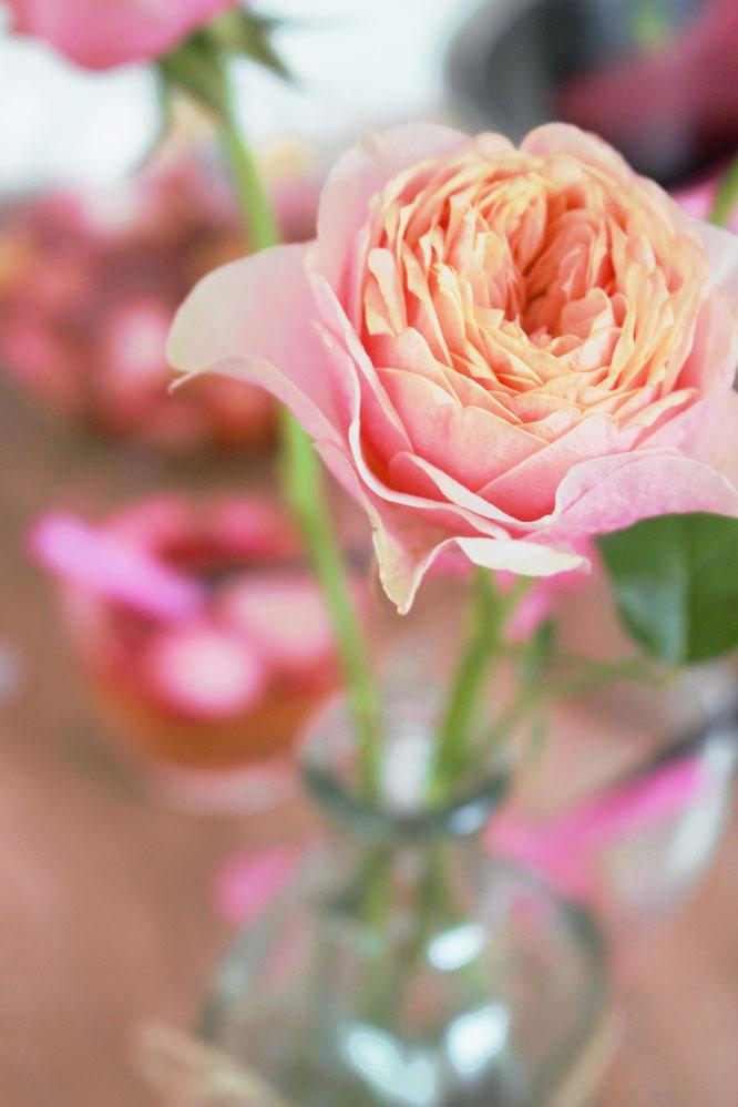 Bild: Trendgetränk Bowle: Ein einfaches Grundrezept für erfrischende Bowle mit Früchten, Sekt, Champagner, Wein und Rosen. Perfekt für Parties und Hochzeiten, gefunden auf www.partystories.de