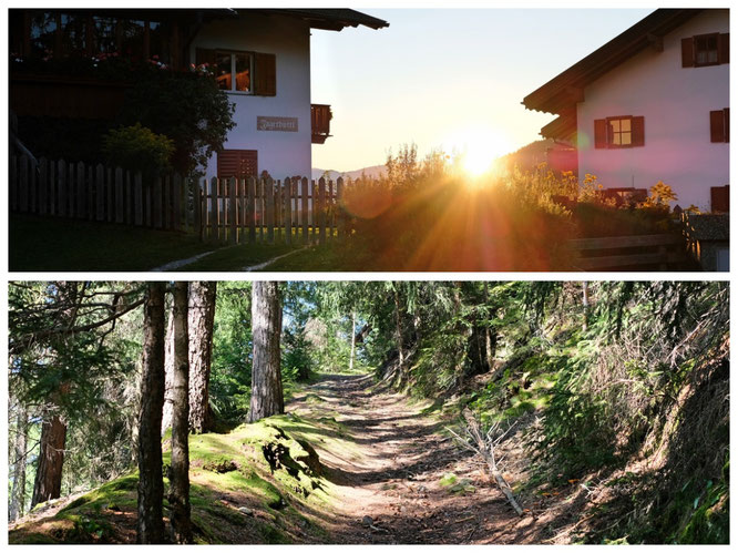 Unten: Günthers alter Schulweg, 6 Km pro Strecke quer durch den bergigen Wald...