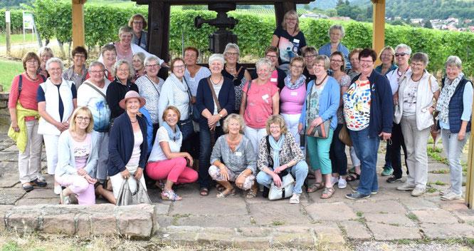 Landfrauen im Weinberg in der Pfalz